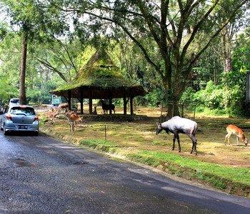 5D4N Malang-TSI 2-Batu-Lenggoksono  ASEAN
