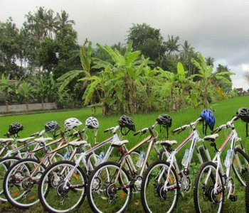 1H Salak Agro COUNTRYSIDE CYCLING
