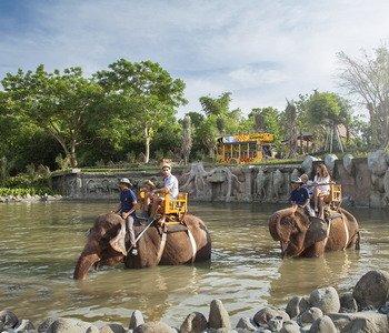 3H2M Bali Zoo