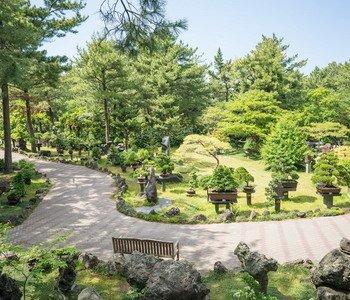 3D2N Jeju West Course SIC Tour