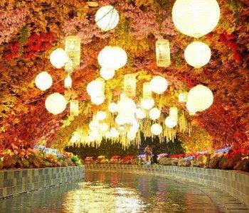 5D/4N Favourite Seoul – Everland – Jeonju – Nami Island – Petite France