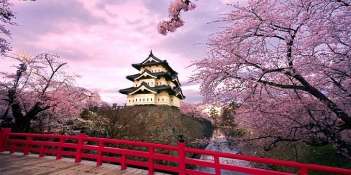 7D Explore Osaka + Nara City, Fushimi Inari Shrine dan Kobe Sanda Premium Outlets