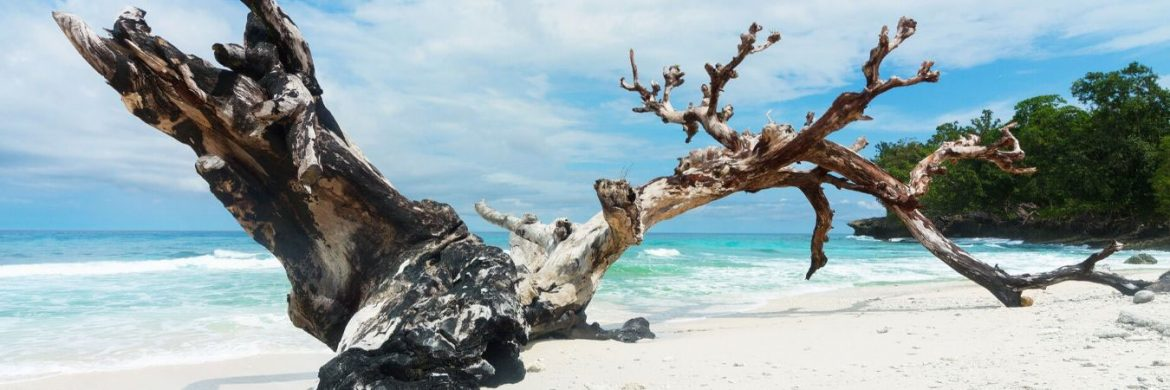 4D/3N Favourite Biak Historical Paradise with Snorkel Trip Owi  Rurbas Island