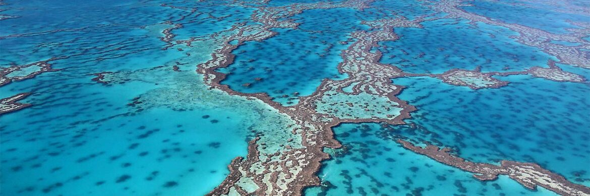 4D/3N Favourite Hamilton Island with Great Barrier Reef Adventure