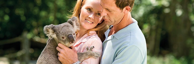 5D/4N Favourite Gold Coast  – Tangalooma Dolphin  Farm Tour Experiences