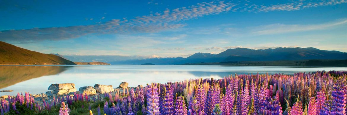 6D/5N Favourite Southern Splendour of  New Zealand