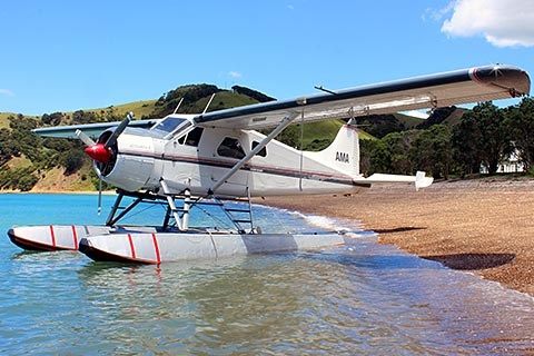 Auckland Seaplane Experience – City Scenic/Gulf Island Scenic/Wine Testing and more