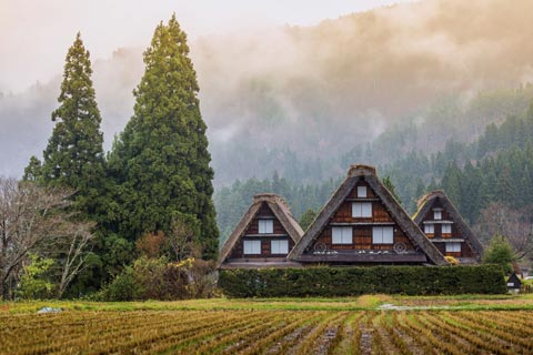 1-Day Bus Tour – Shirakawago Dan Takayama Platinum Route Tour