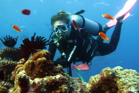 Dive Day Cruise to Great Barrier Reef from Port Douglas