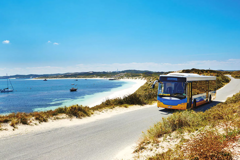 Experience Rottnest Island with Coach Tour