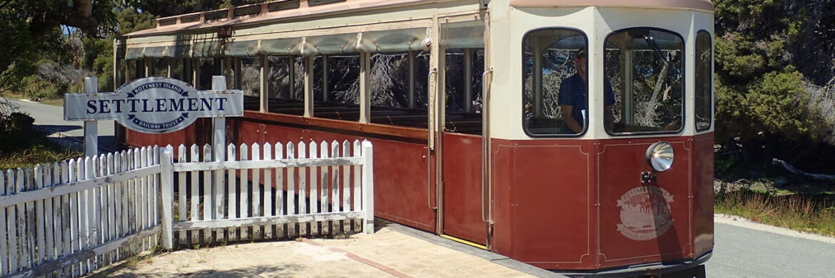 Experience Rottnest Island with Train and Tunnel Tour
