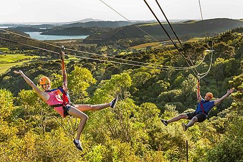 Experience Waihake Island – EcoZip Adventures / Zip, Wine Dan Dine