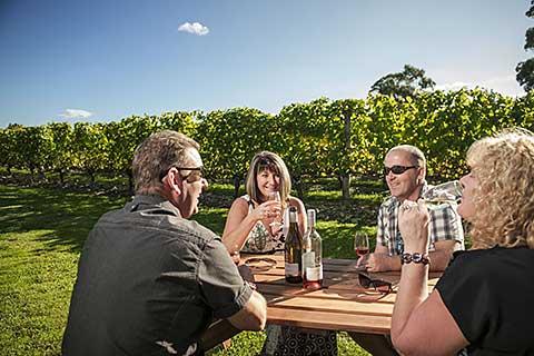 Wellington Food Dan Wine Tour – Capital Tastes/Martinborough Wine Tour/Walking Gourmet Tour