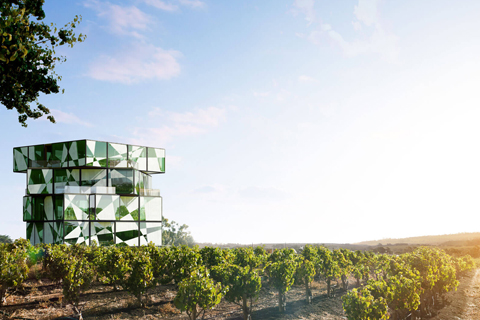 McLaren Vale Food Dan Wine Experiences