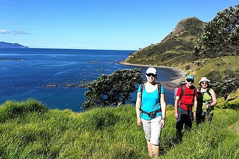 Coromandel Nature Walk Tour – Nature Dan Coast Walk/Wilderness Adventure Walk