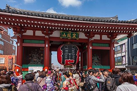 Tokyo 1-Day Bus Tour