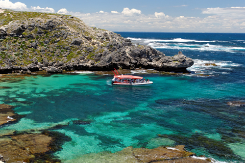 Experience Rottnest Island with Eco Adventure Boat Tour