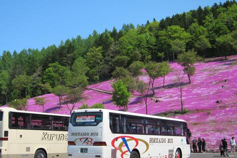 Hokkaido 1-Day Bus Tour – East Hokkaido / Sapporo Morning Sightseeing / Sapporo Afternoon Sightseeing / Sapporo Night View / more