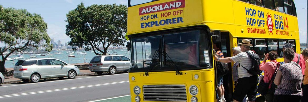 1 Day Pass Hop On Hop Off Auckland