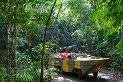 Kuranda Rainforestation Tour from Cairns