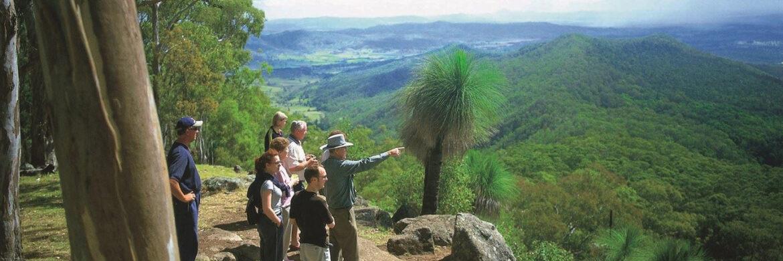 O^Reillys Dan Lamington National Park Tour from Brisbane