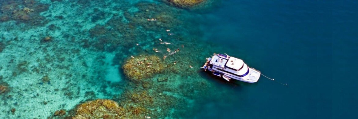 Great Barrier Reef Day Tour from Brisbane