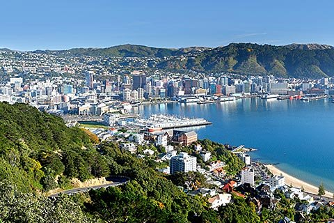 Wellington Activities – City Sight Dan Coastline Tour/Museum Te papa/Zealandia Wildlife