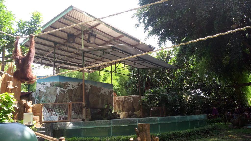 Paket Tour Ke Yogyakarta Dari Jakarta